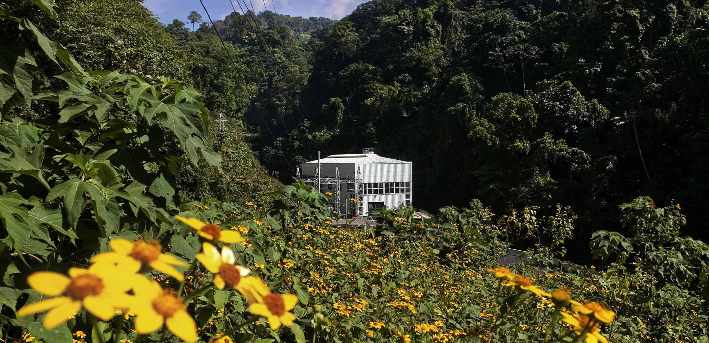 Guatemala: concrete actions to spread renewables in a strategic country